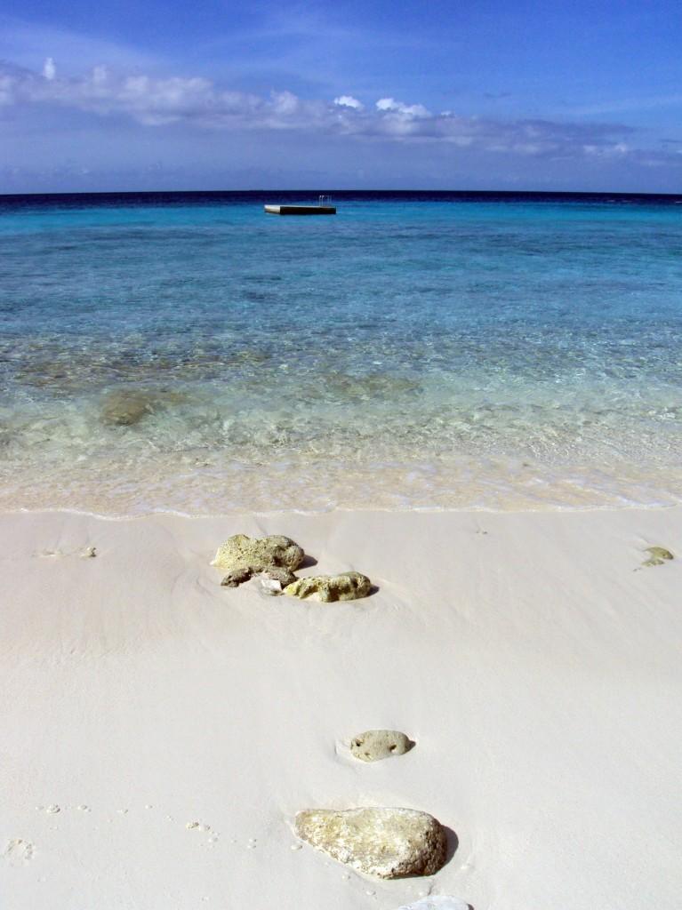 cas-abou-beach-curacao