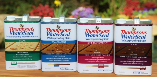 Thomspon's WaterSeal Deck Care Kit