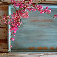 chalk paint word art on an old tray {and buying a new camera}