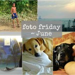 foto friday june