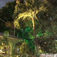 outdoor up lighting, it is so much easier than you think