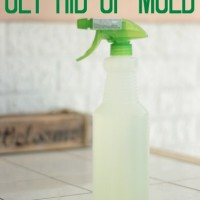 how to get rid of mold {for $2 or less} no scrubbing required