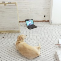 the turning point in the master bathroom renovation