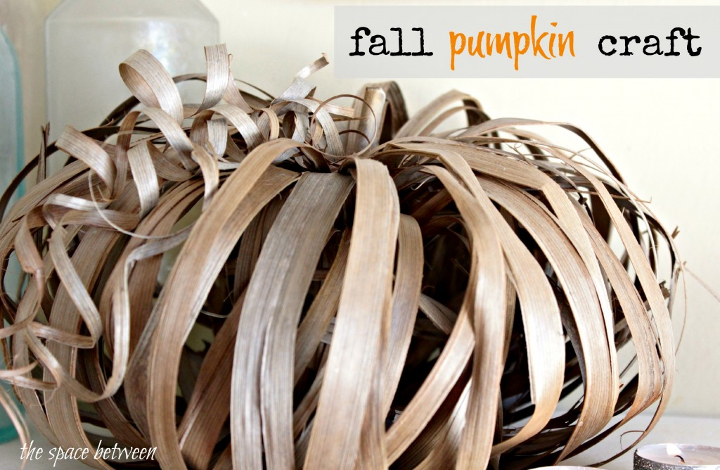 Fall Pumpkin Craft by The Space Between
