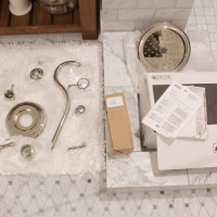 trough style sink faucets and a rain shower head and valve, you know, the bathroom bling