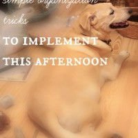 3 easy tips to simple organization you can implement this afternoon!