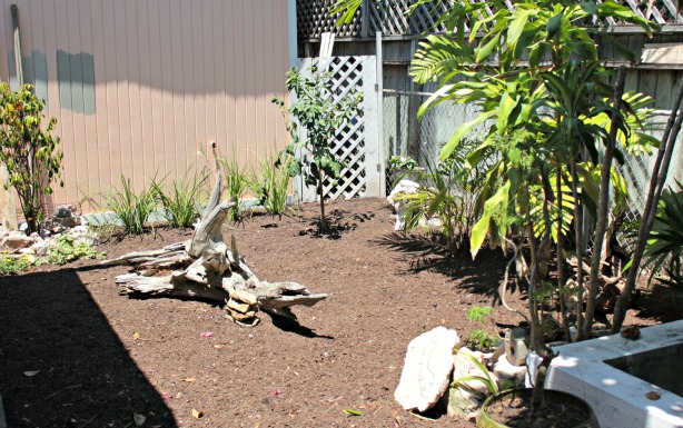 yardscape ideas for your small garden